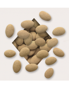 Koppers Cocoa Dusted Almonds 5lb