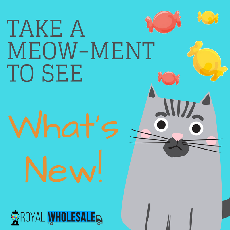 Take A Meow-Ment To See What's New!
